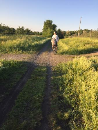 The Wallkill Valley Rail Trail: Riding with a toddler on back