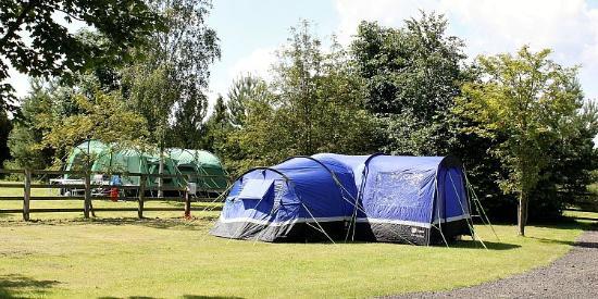 Jasmine Park: Camping Area