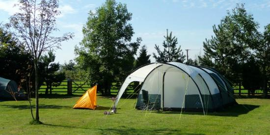Jasmine Park: Camping Pitches
