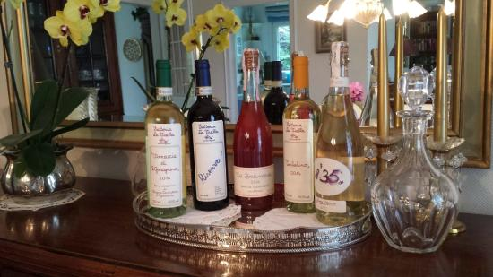 Castiglion Fibocchi, إيطاليا: Great bio wines