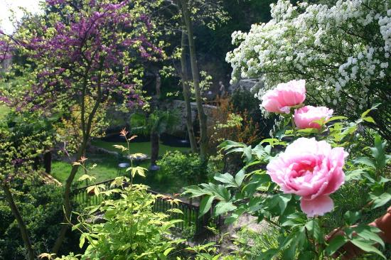 le jardin deden tournon sur rhone france updated 2018 top tips before you go with photos tripadvisor - Jardin D Eden