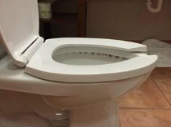 Comfort Suites Southgate: Toilet view