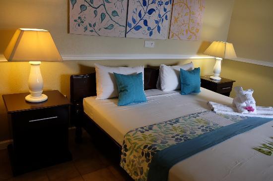 Hotel La Roussette: Room