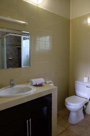 Hotel La Roussette: Bath