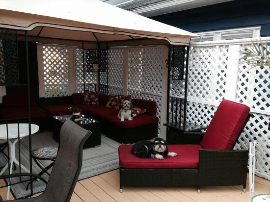 Bewitched & BEDazzled Bed & Breakfast: Part of our New Redesigned Deck