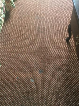 Americas Best Value Inn Nashville North / Goodlettsville: Carpeting throughout the entire room