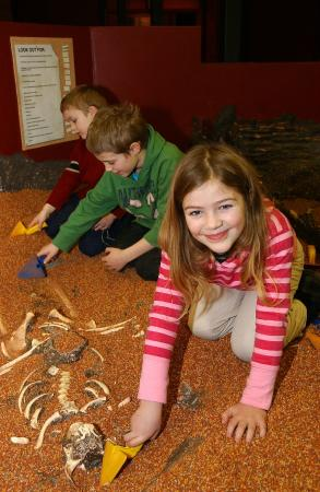 Dig up the past yourself! Grab a trowel and unearth objects and historic treasures in our dig pi