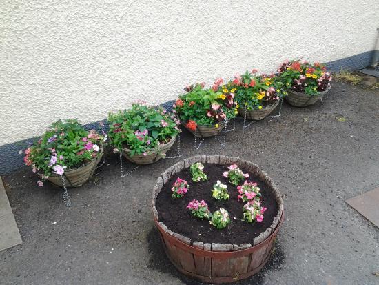 Burrelton, UK : baskets ready