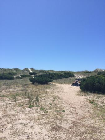 Ocracoke Campground Photo
