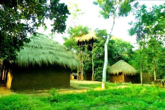 Cabana Lanka Tours