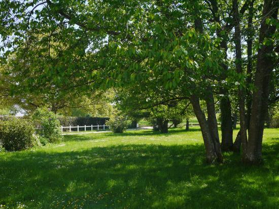Traînou, France: Jardin - partie avant