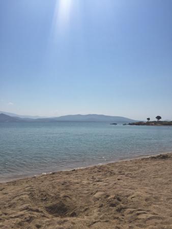 Altinkum, تركيا: Beach 5 mins walk away