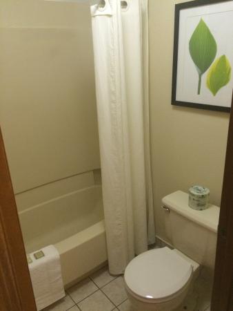 Super 8 Westlake/Cleveland: Bathroom