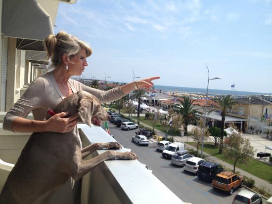 Hotel Giulia : vista