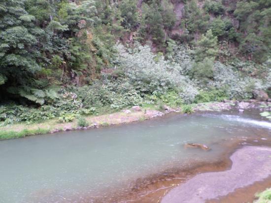 Salto do Cabrito: O riacho a jusante do Salto