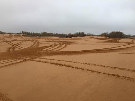 Waynoka, OK: Tracks!
