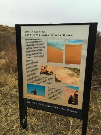 Waynoka, OK: Little Sahara State Park