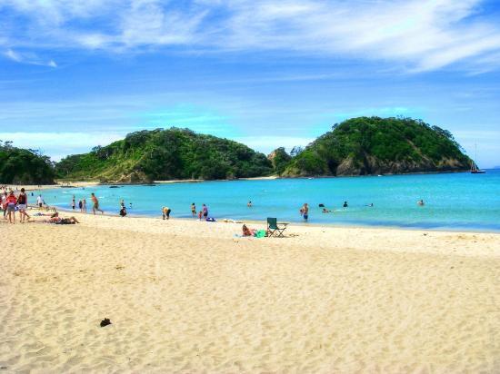 Whangarei, New Zealand: Everybody enjoys this beach!