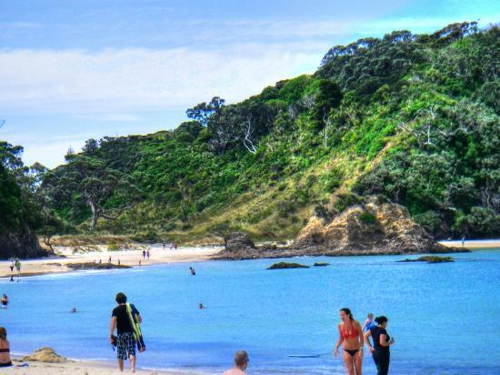 Whangarei, Nowa Zelandia: Swimming is sure fun!