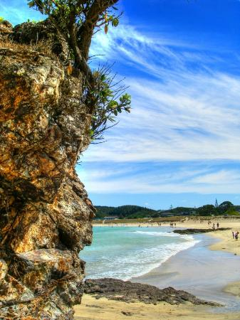 Whangarei, Nowa Zelandia: A landmark on the beach