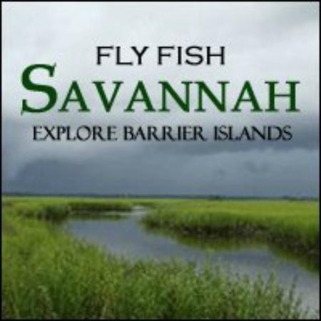 Explore barrier islands explore barrier islands for Flying fish savannah ga