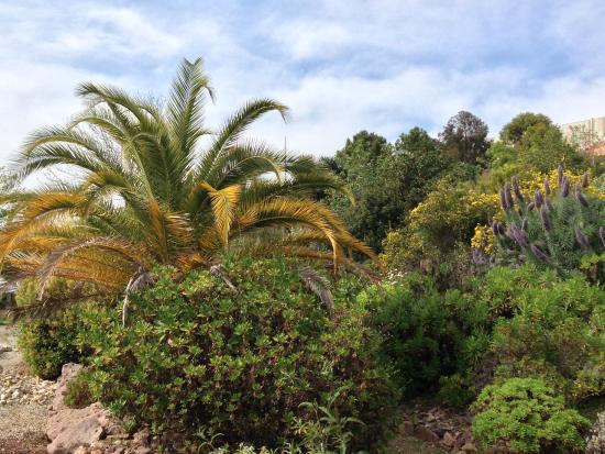 Botanical garden of nice jardin botanique nizza for Jardin botanique nice