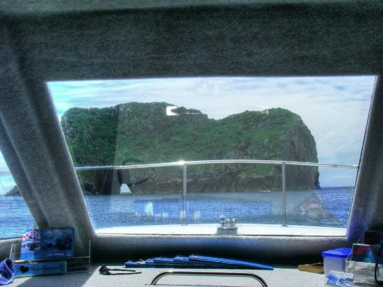 Whangarei, Selandia Baru: The boat we too to visit Poor Knights Island Marine Reserve