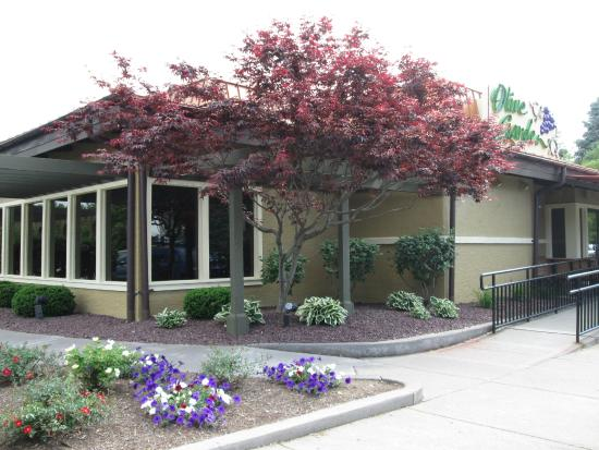 olive garden in greece picture of olive garden rochester tripadvisor