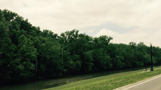 Muncie, IN: View the White River Rapids, & Dam, as you STROLL or BIKE.