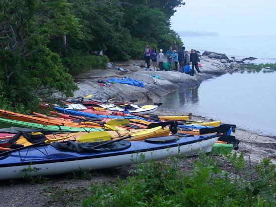 Flood's Cove Ocean Front Cottages & Campsites: We loved sea kayaking from Floods Cove