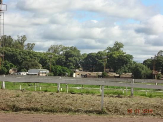 Hipodromo Independencia