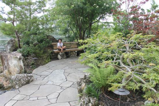 asian garden - Picture of Samuel P. Harn Museum of Art, Gainesville ...