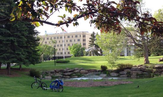 University Of Calgary 2019 All You Need To Know Before