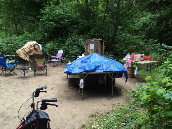 Russian Gulch State Park: Site 17