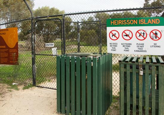 how to get to heirisson island perth