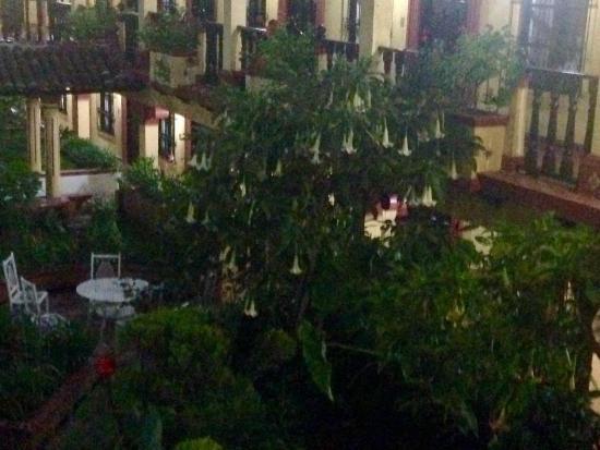 Hotel D'Monica : photo3.jpg