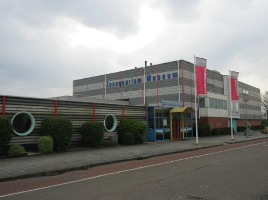 Delfzijl, The Netherlands: Aquarium