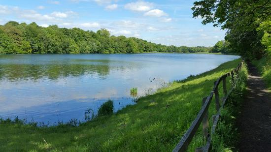 Wigan, UK: Worthington Lakes