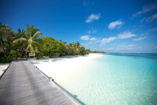The 10 Best Maldives Hotels from £299 - TripAdvisor