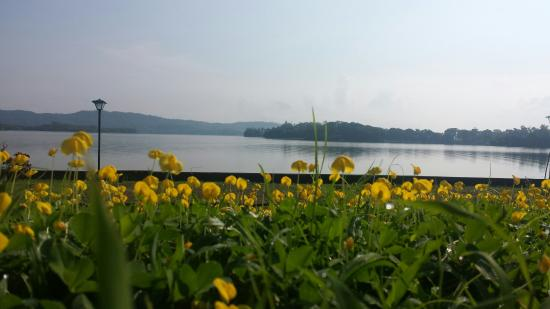 Каламба, Филиппины: Lake Caliraya (as seen from Lagos del Sol Resort)
