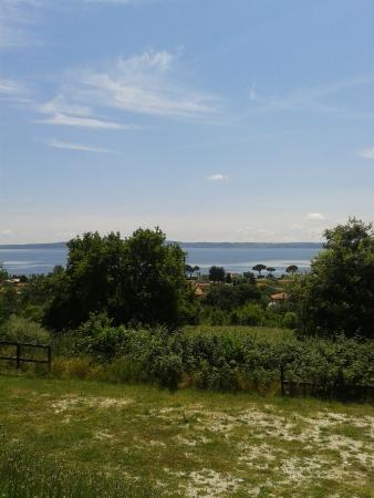 Stunning Le Terrazze Sul Lago Ristorante Trevignano Ideas - Idee ...