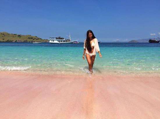 Image result for pink beach komodo