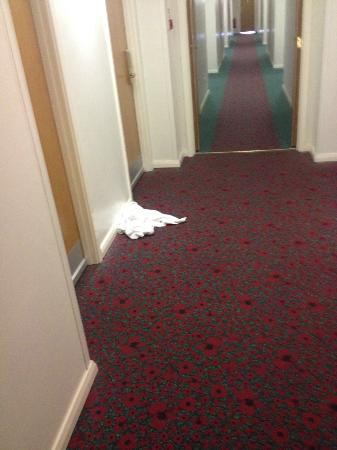 Ibis Rugby East: very clean is not it ?