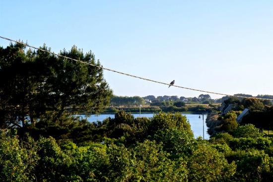 Hotel Lann-Roz : Вид с балкона