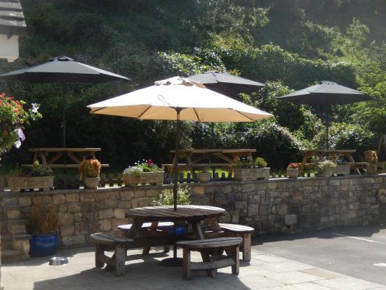 Chalford, UK: New umbrellas
