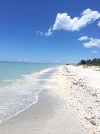‪Tarpon Bay Beach‬