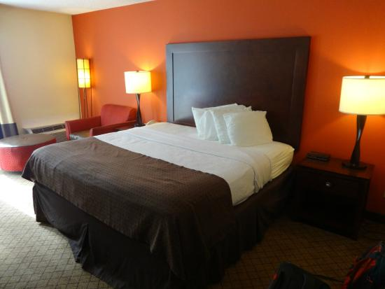Jameson Hotel & Conference Center: A decent sized, comfortable bed.
