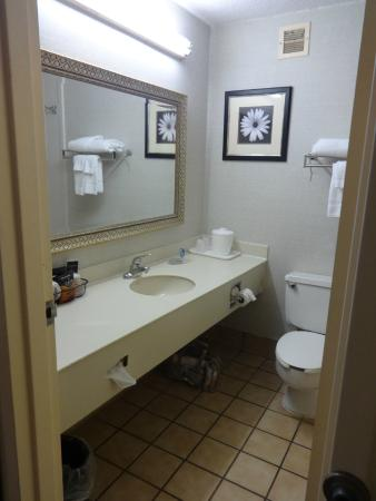 Jameson Hotel & Conference Center: A good-sized wash basin area.