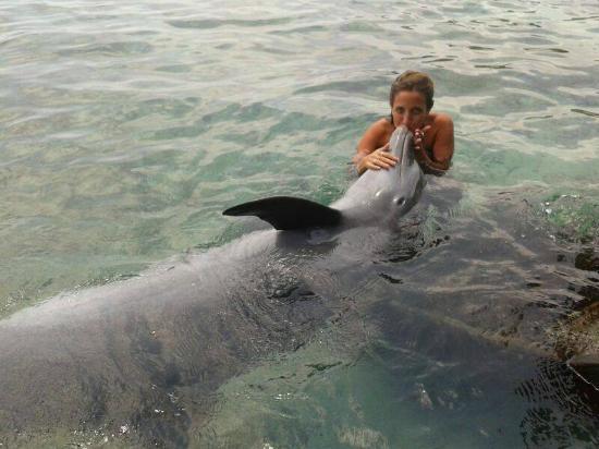Tours en Islas del Rosario: Sueño cumplido!