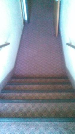 Super 8 Springfield North I-44: Steps to Bottom Floor